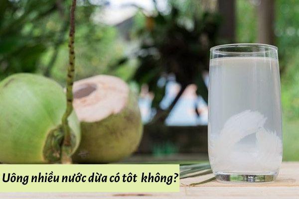 Uống nhiều nước dừa có tốt không? Công Dụng & Lưu Ý khi dùng!